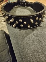 Spike leather dog collar (Brand new) in St. Charles, Illinois