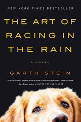 The Art of Racing in the Rain in Kingwood, Texas