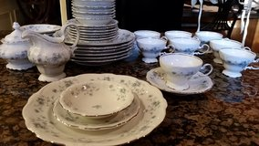 Dishes in Elgin, Illinois