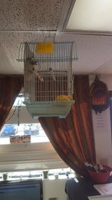Small size birdcage in Yucca Valley, California
