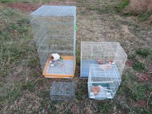 Assorted bird cages in Alamogordo, New Mexico