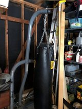 Everlast Punching Bag & Stand in Kingwood, Texas