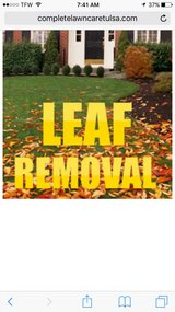 lawn work (leaf removal ) in Leesville, Louisiana