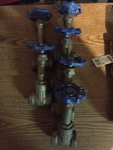 "3/4"" Thd Brass Gate Valves in Oswego, Illinois"