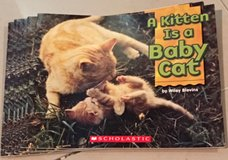 6 Scholastic Guided Reading Books Level C A Kitten is a Baby Cat in Okinawa, Japan