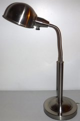 Stainless Goose Neck Desk Lamp in Naperville, Illinois