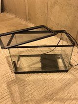 10 gallon Terrarium in Chicago, Illinois