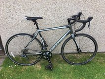 Cannondale Synapse Alloy Claris 8, 56 cm in Grafenwoehr, GE