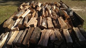 Split Fire Wood in Kingwood, Texas