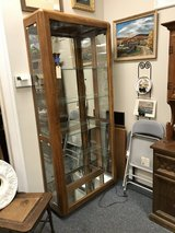 Curio Cabinet with lights in St. Charles, Illinois
