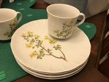 Toscany China set in Baytown, Texas
