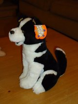 "plush dog 9-1/2""H in Glendale Heights, Illinois"