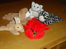 5 beanbag animals in Glendale Heights, Illinois