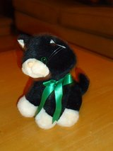 "cute stuffed 8"" kitten in Glendale Heights, Illinois"