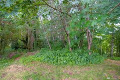 Land for Sale .41 Acres in Olympia in Tacoma, Washington