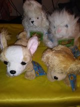 Webkinz by Gant. Collection #4 in Conroe, Texas