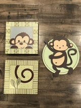Baby monkey pictures in Travis AFB, California