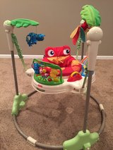 Fisher-Price® Rainforest Jumperoo in Glendale Heights, Illinois