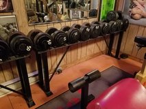 Steel Weight Set and Rack - 55lb, 60lb, 65lb, 70lb and 75lb Pairs in Orland Park, Illinois