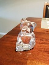 crystal bear in Lawton, Oklahoma