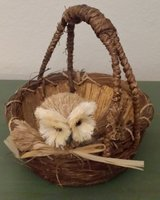 Basket woven Owl in 29 Palms, California
