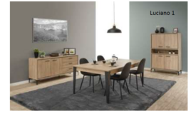 Emil Dining Set #1 with delivery - see  VERY  IMPORTANT  below in Stuttgart, GE