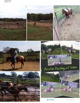 I specialize in breaking horses and colt starting in Fort Leonard Wood, Missouri