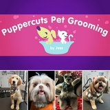 Dog & Cat Grooming 10% off for Military with ID! in Travis AFB, California