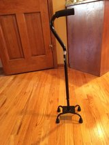 Black Four prong Cane in Glendale Heights, Illinois