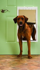 PetSafe Plastic Pet Door with Soft Tinted Flap - X-Large in Glendale Heights, Illinois