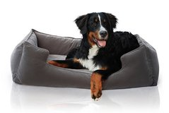 Petsbao Premium Orthopedic Dog Bed & Lounge with Solid Memory Foam | Waterproof Liner | Washable... in Chicago, Illinois