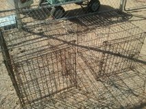 Dog Kennels in Yucca Valley, California