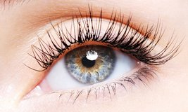 Gorgeous Eyelash Extensions in Fort Carson, Colorado