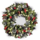 """24"""" Crestwood Spruce National Tree Pre-Lit Christmas Wreath in Chicago, Illinois"""