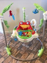 Fisher-Price Rainforest Jumperoo in Yucca Valley, California