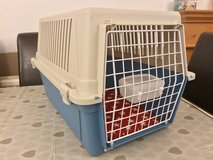 Medium Size Pet Carrier in Lakenheath, UK