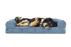 FurHaven Orthopedic Dog Couch - Sofa Pet Bed for Dogs and Cats in Oswego, Illinois