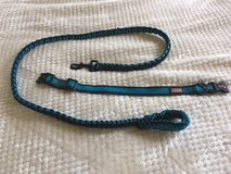 Matching Kong Dog Collar and Leash in Spring, Texas