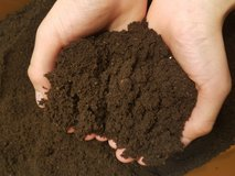 Worm Compost in Fort Campbell, Kentucky