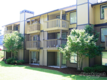 ~Miramonte Apartments in Tacoma~ in Fort Lewis, Washington