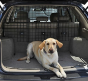 Vehicle pet barrier in Camp Pendleton, California