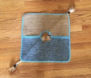Cat Play/Scratch Mat in Yorkville, Illinois