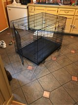 large kennel in Beaufort, South Carolina