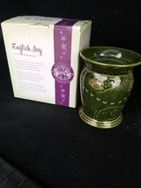 Scentsy English Ivy in Orland Park, Illinois