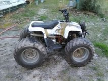 Kids Camo 4-wheeler in Fort Polk, Louisiana