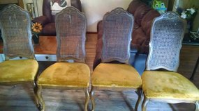 Cane back chairs 1940-1950's in Kingwood, Texas