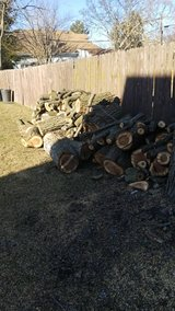 Fire wood in Elgin, Illinois