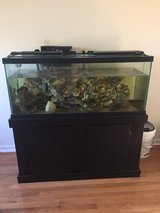 75 gal aquarium w/stand in Macon, Georgia