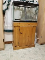 20 gal tall Fish tank & Stand in Glendale Heights, Illinois