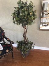 6 Foot Tall Grapevine Tree in Square Planter - Artificial in Glendale Heights, Illinois